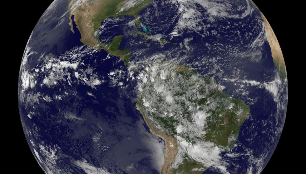 NY TILSTANDSRAPPORT: I en fersk rapport har forskere fra WWF overvåket utviklingen i drøyt 14 000 bestander av 3 700 ulike arter.  Fra 1970 til 2012 gikk bestandene ned med 58 prosent. Det betyr at verdens dyreliv er mer enn halvert på litt over 40 år. Foto: REUTERS/NOAA/Scanpix