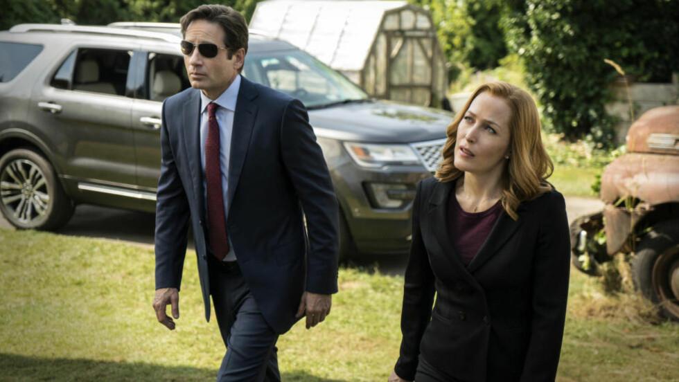 COMEBACK: «X-Files», med David Duchovny og Gillian Anderson, er tilbake om få dager. Norsk premiere på TV3 tirsdag 28. januar. Foto: FOX / NTB Scanpix