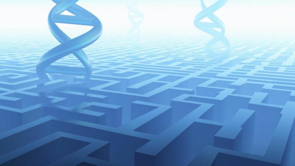 DNA: Ansvarlig for politiske holdninger? Foto: Science Photo Library