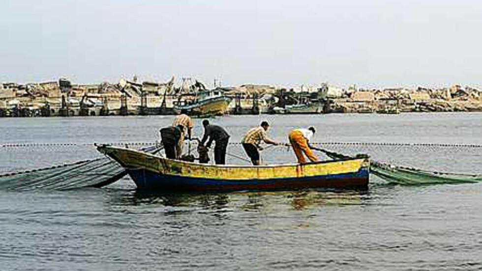 Antallet fiskere i Gaza sunket fra omtrent 10 000 til nærmere 3 000, skriver Espen Goffeng. Foto: Mahmoud Ibrahim