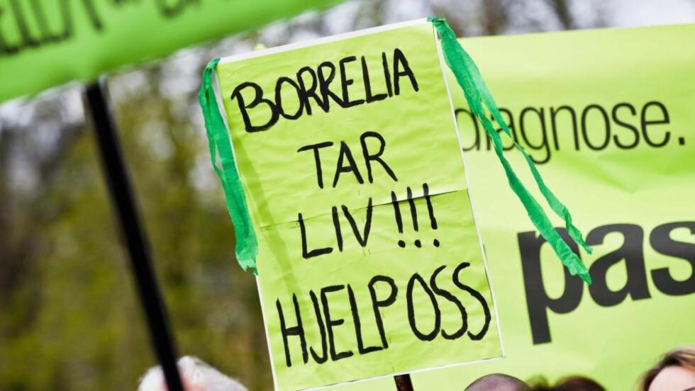 BABESIA OG BORRELIA er navn på to ulike mikroorganismer og ikke sykdommer, skriver artikkelforfatteren. Foto: NTB Scanpix