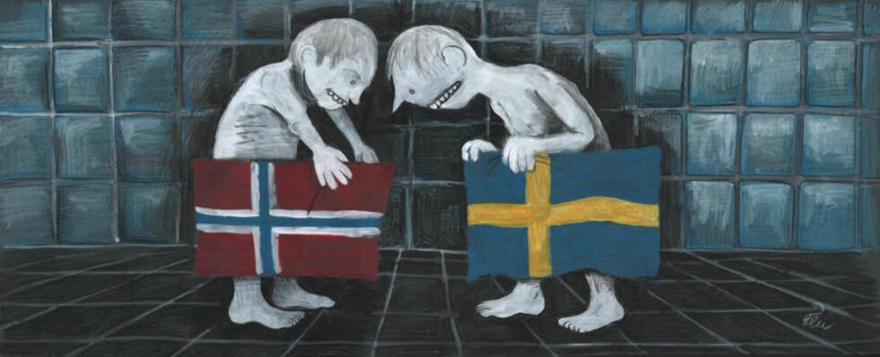 FALSKT BILDE: Bildet av Norge som et eneste stort villaområde, der alt ordentlig arbeid utføres av polakker, litauere og svensker er verken selvkritisk eller avslørende, det er falskt, skriver Marte Michelet. Illustrasjon: Flu Hartberg