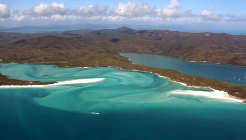 - 95 prosent av Great Barrier Reef er alvorlig bleket