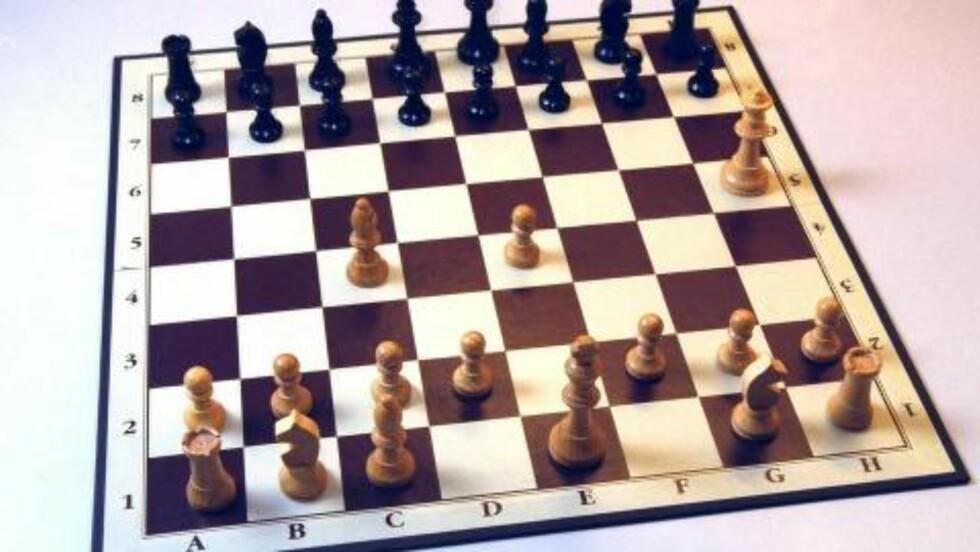 SJAKKJUKS?: Stein Bjørnsen er dømt av Norges Sjakkforbund dømt for juks i sjakkturnering. Foto: NTB Scanpix
