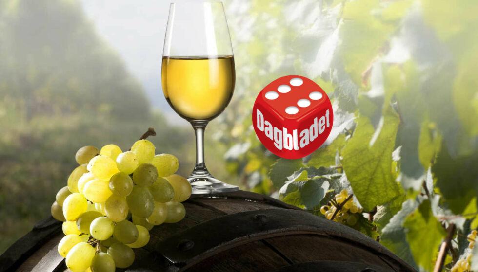 SKÅL: Tema for nyhetslanseringen til Vinmonopolet er mer eller mindre høstlige vinstiler i ulike varianter. Vinekspert Robert Lie fant mye godt i utvalget - og ga en rekke høye terningkast.