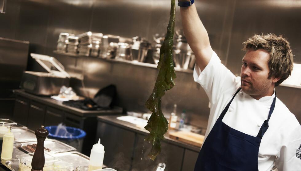 GRØNNSAKER FRA HAVBUNNEN: Kokk Morten Rathe holder opp sukkertare, en spiselig algevekst fra havet. Foto: KENT SKIBSTAD /NTB SCANPIX