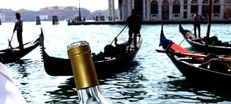 Vin som passer særdeles godt til seine og lune sommerkvelder