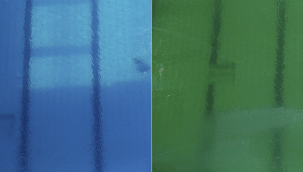 ENDRING: Fargen på vannet i stupearenaen Maria Lenk Aquatics Centre har skiftet farge over natta. Ingen har noe godt svar på hvorfor. Foto: REUTERS/Michael Dalder