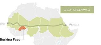 En grønn mur av 7000 km trær skal redde 500 mill. mål med land og hindre ekstremisme