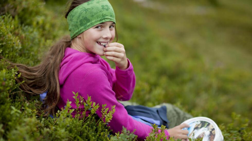 <strong>IDYLLEN ER OVER:</strong>Det kan være lurt å varmebehandle blåbærene du plukker i skogen. Foto: Jonas Frøland, Samfoto