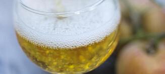 Utskjelte rusbrus fungerer nå som et alternativ til de som ikke drikker øl og vin