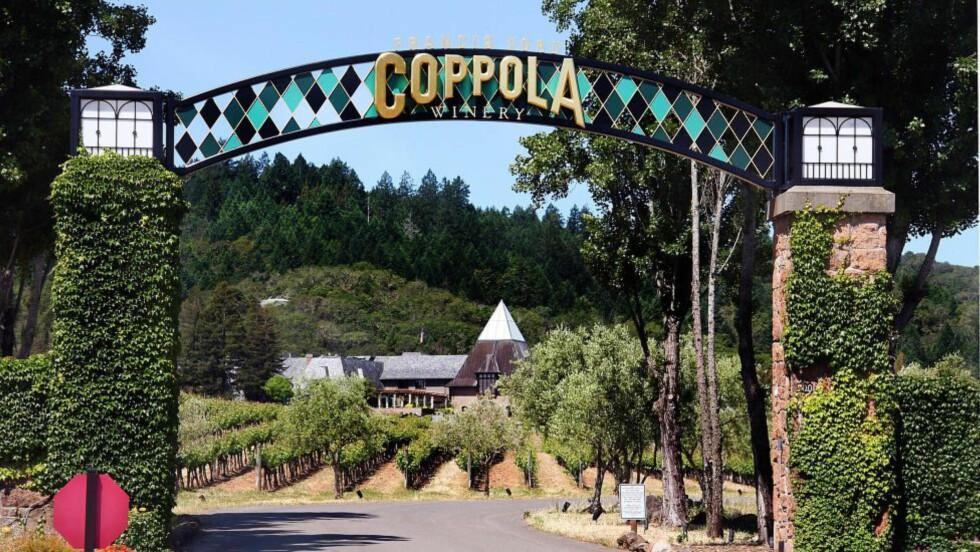 EN DAGSTUR FRA SAN FRANCISCO: Filmskaper Francis Ford Coppolas vingård i Alexander Valley i Sonoma, midt i hjertet av Calinfornas vingårder, henter sine chardonnaydruer fra den berømte Russian River Valley. Vingården er en besøksgård, med film, vin og svømmebasseng på menyen. Foto: KIRSTEN MARGRETHE BUZZI