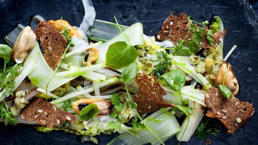 BLÅSKJELLSALAT: Dette er en frisk og delikat salat, og en fin måte å servere blåskjell på. Her er det brukt hjertesalat, men du kan også bruke annet grønn salat du liker. Foto: METTE MØLLER