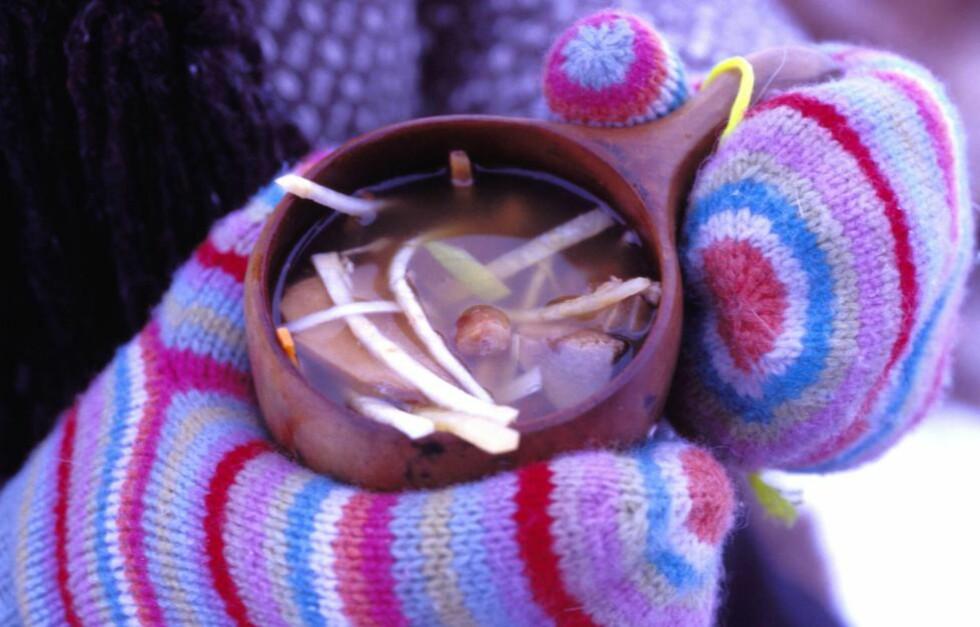 ENKELT: Suppe på termos, biter av kjøtt eller pølser. På tur trenger vi mat som varmer og metter. Dessuten opplever vi andre smaker når vi er ute. Maten smaker bedre. Kanskje har du opplevd det selv, at mat du har spist ute setter seg som sterke minner. Foto: TRYM IVAR BERGSMO / SAMFOTO