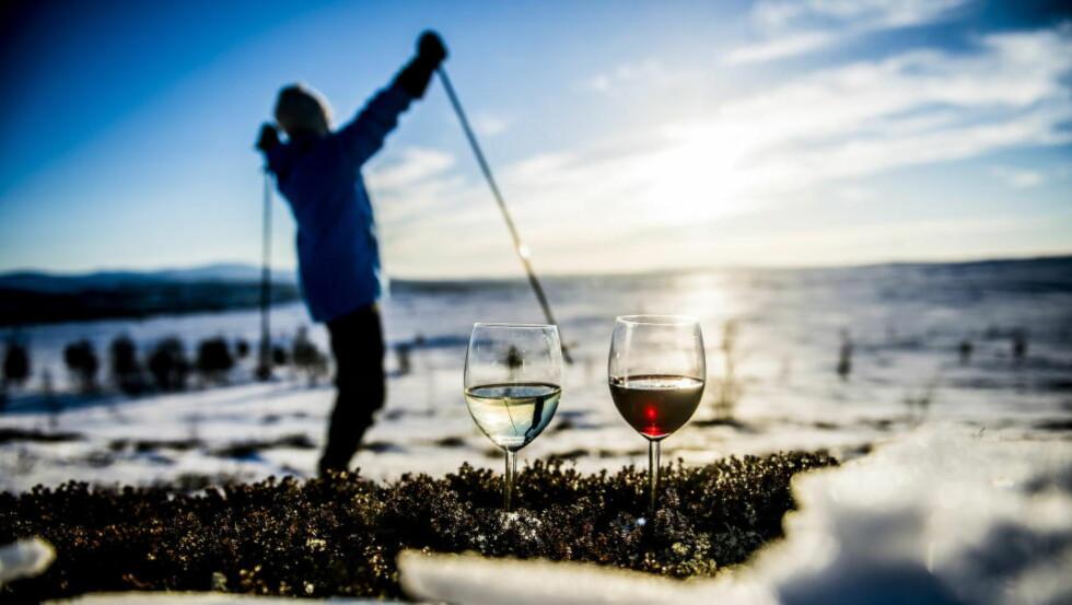 HVILKEN VIN SKAL MED TIL FJELLS? Vin på boks er en praktisk løsning, men hvor god er den? Vi har testet 18 pappviner. Foto: THOMAS RASMUS SKAUG