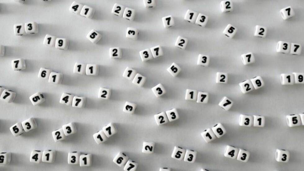 PRIMTALL: Inntil nylig gikk man ut fra at primtallene dukket opp i et nærmest tilfeldig mønster, men nå har Robert Lemke Oliver og Kannan Soundararajan ved Stanford University i USA publisert en studie som beviser at så ikke er tilfellet. Foto: NTB Scanpix