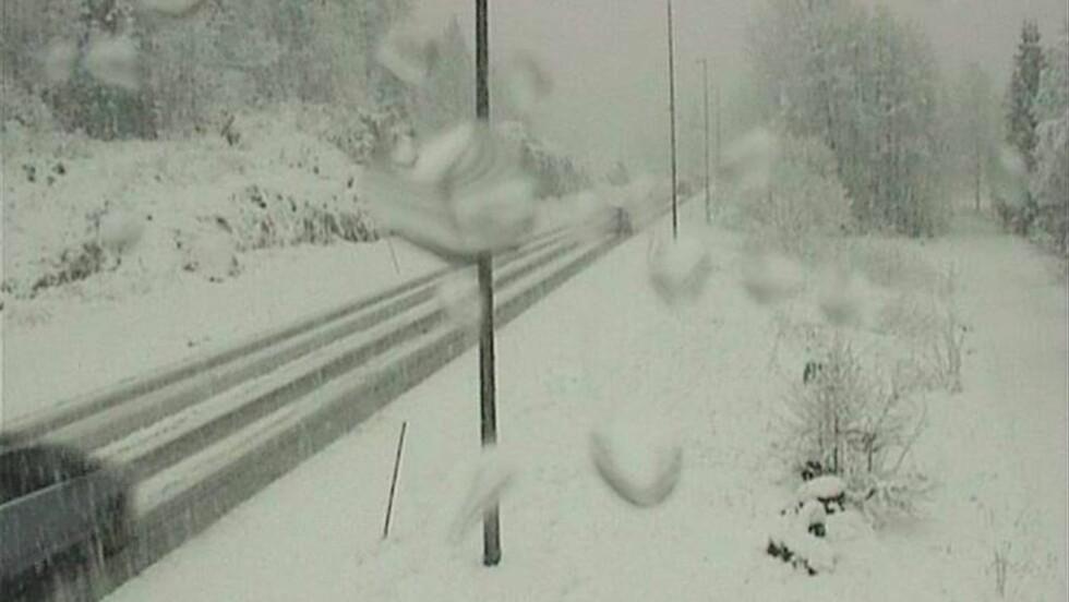 HASLESTAD NÅ: Dette bildet viser E18 ved Haslestad i dag tidlig klokka 08.44. Snøværet har flyttet seg vestover og ifølge Statens vegvesen er det nå verst i Aust-Agder. Foto: Statens vegvesen