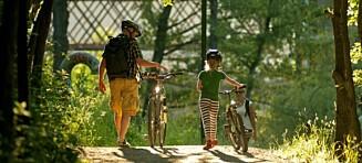 82 prosent av skilsmissebarn vil ikke at foreldre skal holde sammen «for barnas skyld»