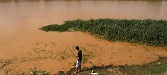 Brasiliansk elv fylt med giftig gjørme etter demningskollaps