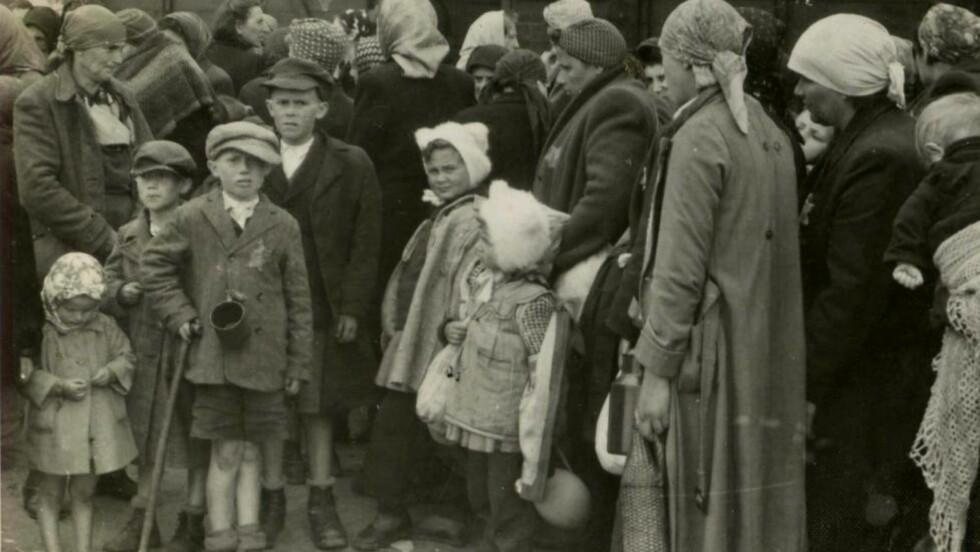 DEBATT: Timothy Snyders nye bok om holocaust har allerede utløst skarpe debatter i fagmiljøene. Bildet viser en gruppe jøder som ankommer konsentrasjonsleiren Auschwitz-Birkenau i mai 1944. Foto: NTB SCANPIX