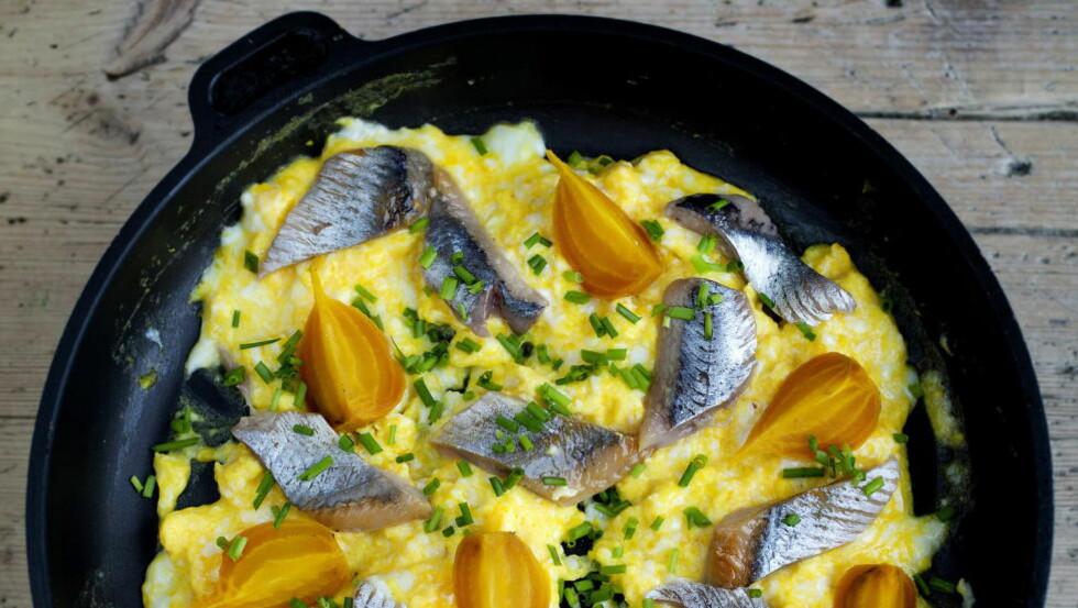 SILD I PANNE: Arne Brimis lune eggerøre, biter av spekesild og kokte beter er perfekt vintermat. Sunt, billig og veldig godt. Foto: METTE MØLLER