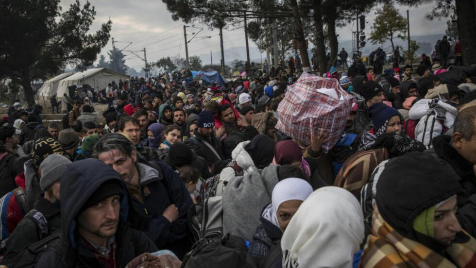 FORTELLER OM GRUSOMHETER: Psykoterapaut Susanne Höhner forteller om hvordan en rekke av kvinnene hun behandler på et mottak i Berlin har vært gjennom grusomme seksuelle overgrep på sin vei fra Syria til tryggheten i Europa. Her står flyktninger på grensen mellom Makedonia og Hellas i starten av desember i fjor. Foto: Jodi Hilton/NurPhoto/NTB Scanpix