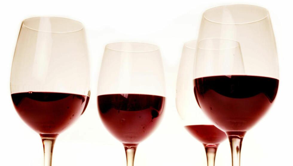 MYE BRA: - Totalt sett er det et bra utvalg av kvalitetsvin som lanseres med flere produkter som vil gjøre seg godt både til julematen og under juletreet, skriver Dagbladets vinekspert, Robert Lie, om Polets høstslipp. Foto: METTE MØLLER