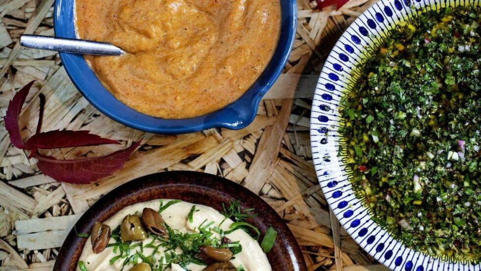 SUNNE SAUSER: De beste sausene lager du sjøl, og disse tre variantene fra Karla Siverts er både fulle av sunne ingredienser og enkle å lage. Foto: METTE MØLLER