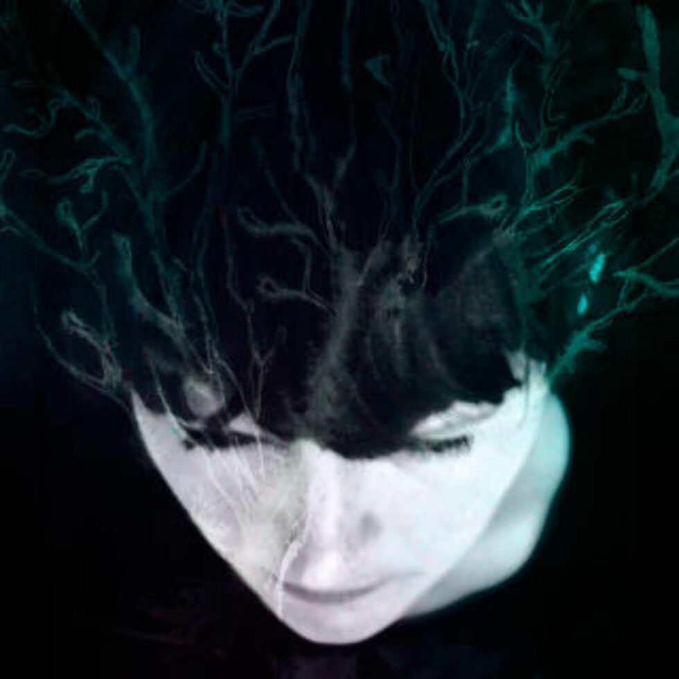 Anmeldelse: Hanne Kolstø - «While We Still Have Light»