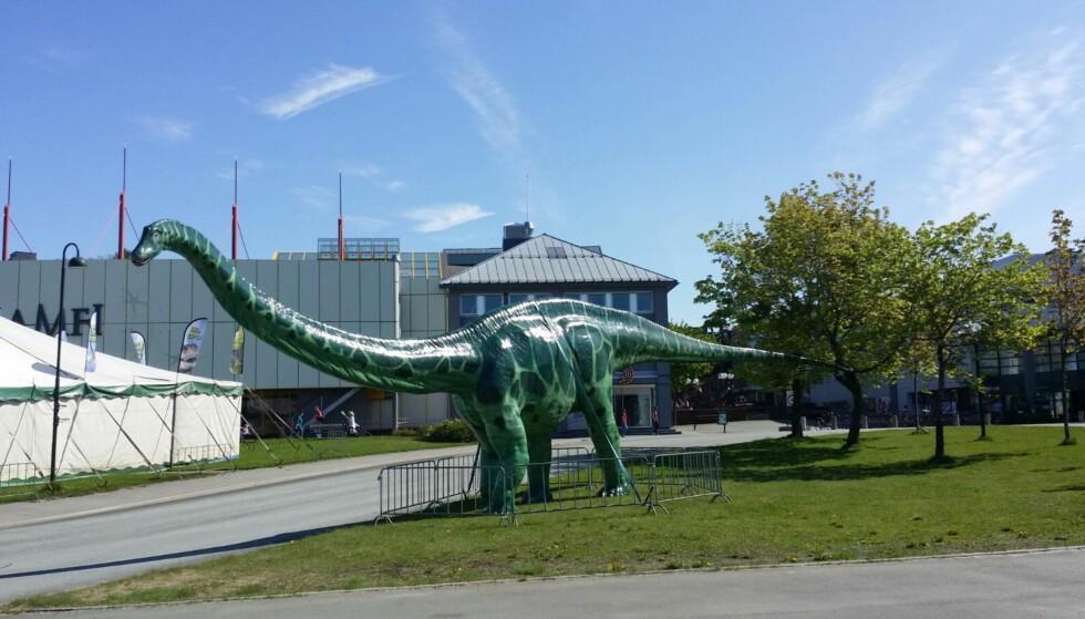 ETT BEIN MINDRE Å STÅ PÅ: Diplodocus-figuren til Dinoworld Norge har mistet en fot i løpet av natta. Foto: Dinoworld Norge.