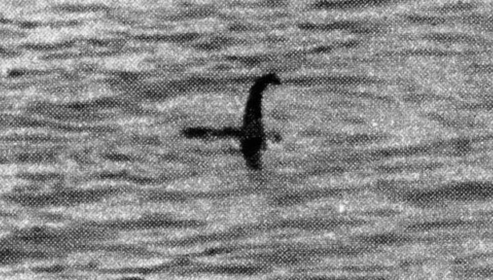 MONSTER:  I 1934 ble dette fotografiet av Loch Ness-monsteret framholdt som et bevist på at det eksisterte. I ettertid viste det seg at bildet var iscenesatt av fotografen. Foto: NTB Scanpix