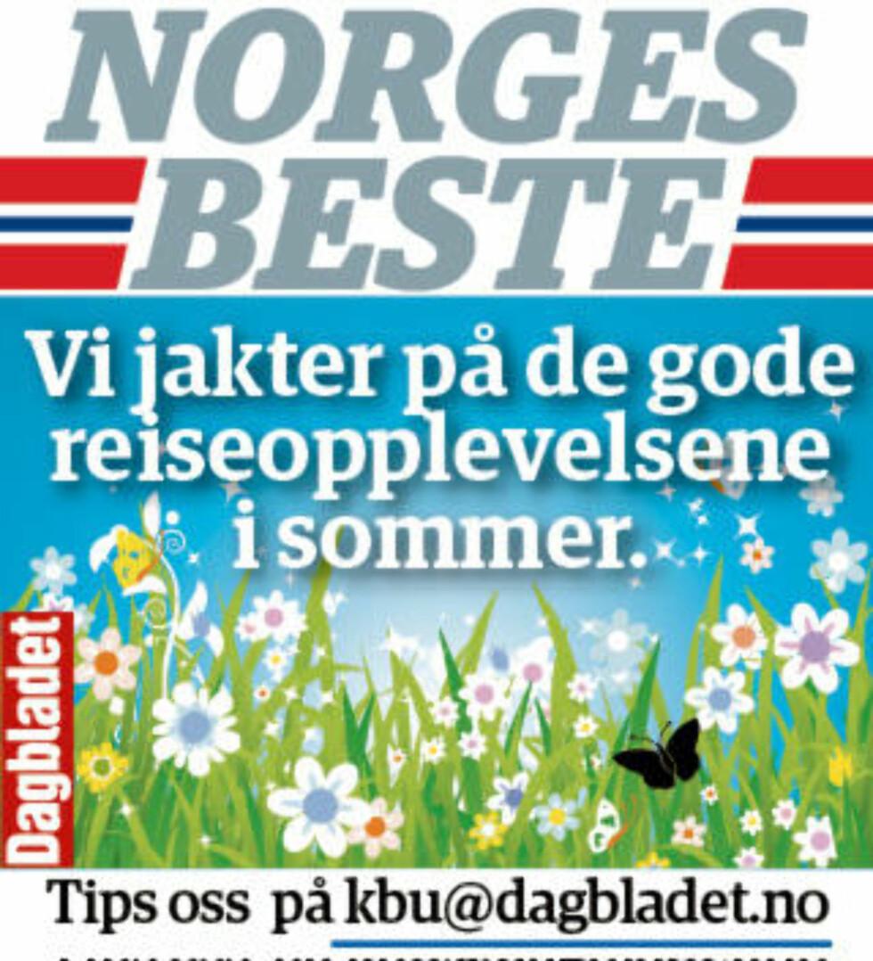 Etter finværet i fjor ville sju av ti ta ferien i Norge