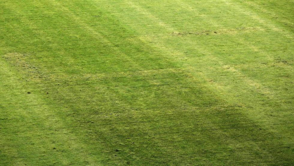 STRAFFES:  Ukjente gjerningsmenn brukte kjemikalier til å drepe gresstrå i hakekors-formasjon før oppgjøret mot Italia. Det kroatiske fotballforbundet prøvde å kamuflere det belastede symbolet, uten å lykkes helt. Foto: AP Photo/Darko Bandic/NTB Scanpix.
