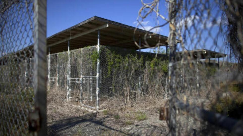 FENGSEL:Flere fanger er blitt sendt hjem fra Guantanamo Bay de siste åra, men president Obama vil stenge fengselet. Dette bilder er fra en av de nedlagte delene av fengselet. Foto: REUTERS/Bob Strong/NTB scanpix