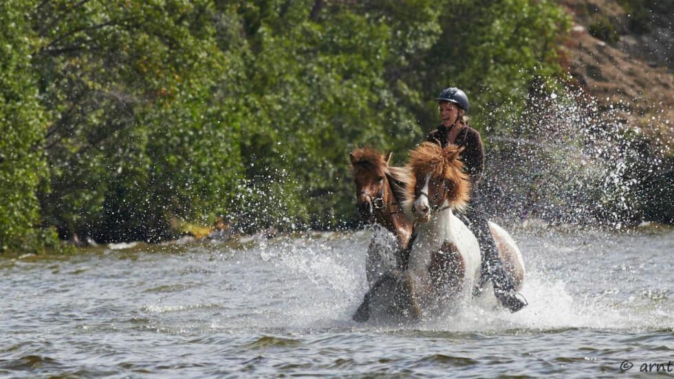 EVENTYRLYSTEN. Cathrine Fodstad sier at dette bare er et eventyr hun ikke kan gå glipp av. Nå venter 100 mil på hesteryggen i Mongolia. Foto: Arnt Stavne