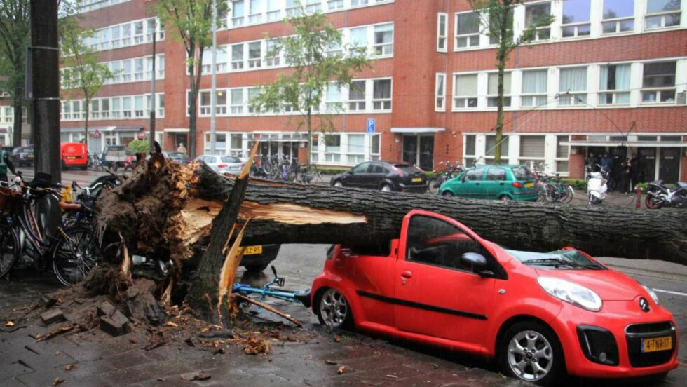 KAOS:  Det er restene av et gammel tre og en ny, parkert bil i Amsterdam lørdag ettermiddag. Nå er samme lavtrykket over Sør-Norge, i mildere versjon. Foto: EPA/NTB Scanpix.