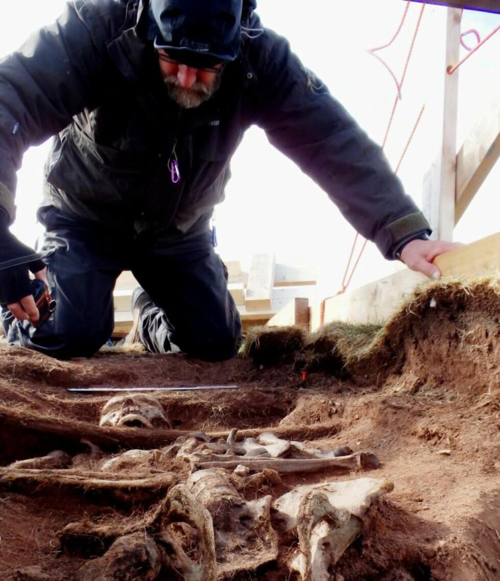 MULIG RUSSISK GRAV:  En viktig årsak til at arkeologene tror at funnet på Bjørnøya er en russer, er at russerne, i motsetning til nederlendere og engelskmenn, ikke alltid puttet sine døde i kister. Her sammen med Dag Nævestad. Foto: Arild S. Vivås/Sysselmannen i Svalbard