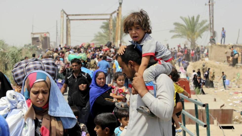 FLYKTNINGESTRØM: Interne flyktninger fra Ramadi strømmer mot Bagdad. IS har stengt av vannet i de knusktørre områdene. Foto: Reuters