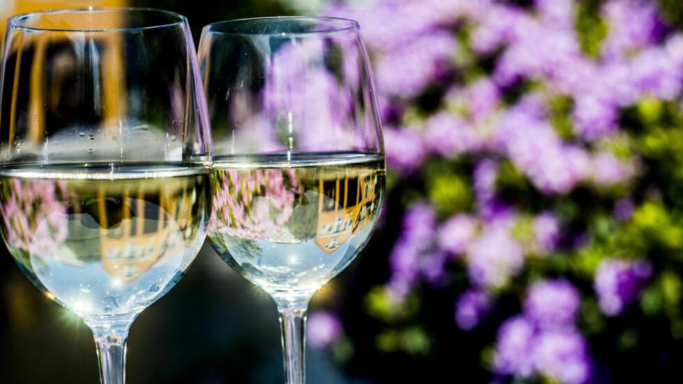 BASISNYHETER: Vareutvalget på Vinmonopolet blir stadig større, og nyheter slippes ofte. Vinanmelder Robert Lie har samlet sine 12 favoritter fra polslippene så langt i år. Foto: THOMAS RASMUS SKAUG