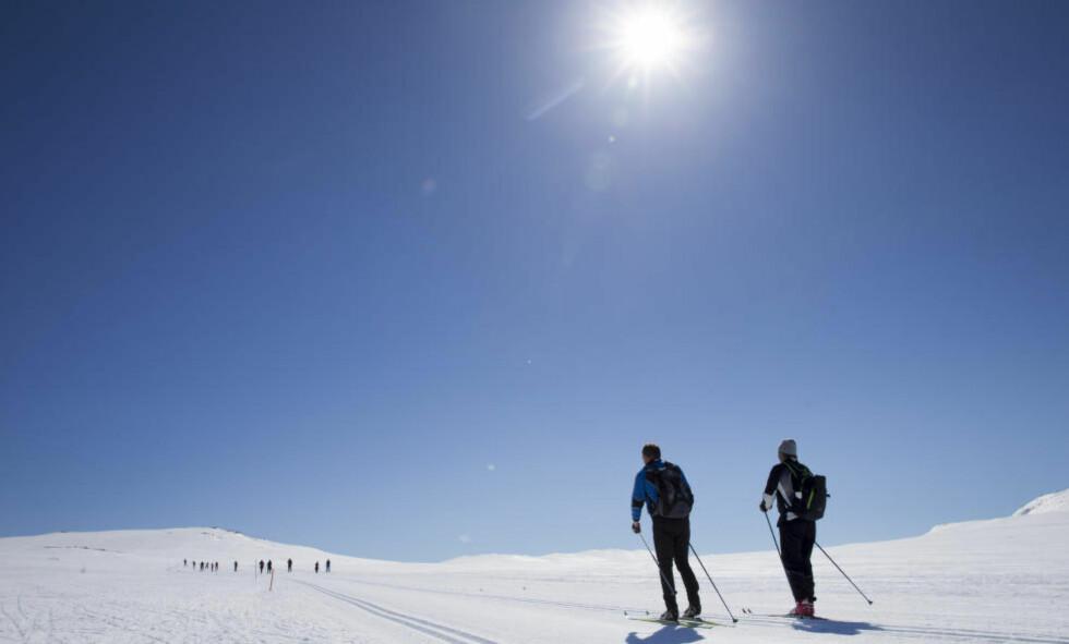 HETT:  Årets februarmåned var den nest varmeste som noensinne er blitt målt på kloden, ifølge amerikanske forskere. Dette bildet er fra Hovden i Bykle. Foto: Håkon Mosvold Larsen / NTB scanpix