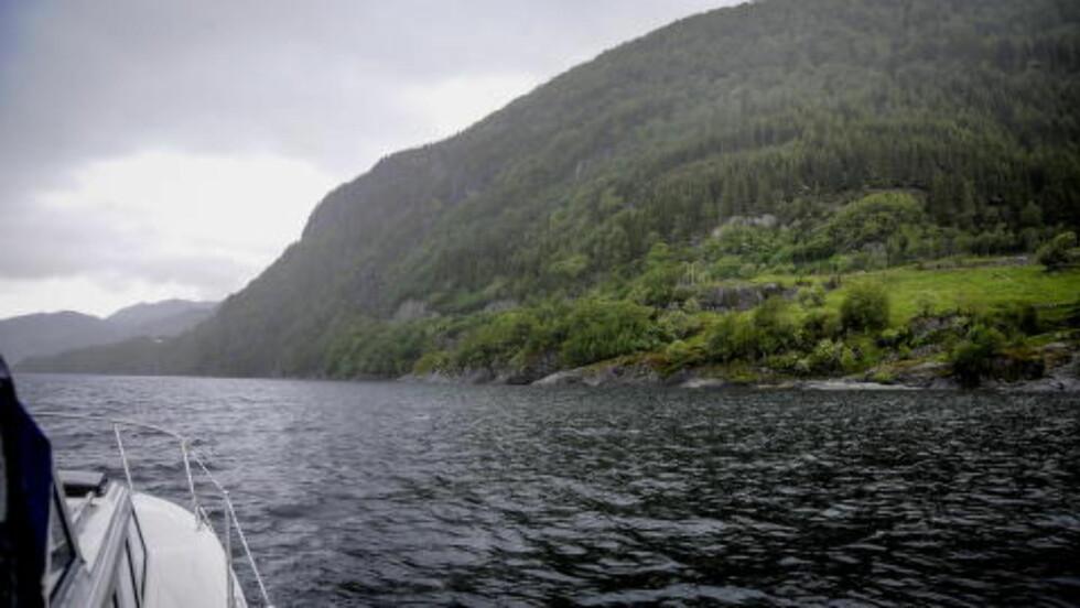 VIL STARTE GRUVE HER:   Oslo-selskapet Nordic Mining vil sprenge bort toppen av fjellet og gjøre det om til et steinbrudd. 95 - 97 prosent av massene vil selskapet deponere i fjorden. Foto: Øistein Norum Monsen / Dagbladet
