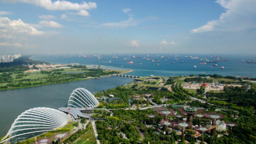 SHIP O'HOI: Fra å være en rolig fiskerlandsby har Singapore vokst frem til å bli en multietnisk metropol, mye takket vært shippingindustrien. Foto: MARI BAREKSTEN