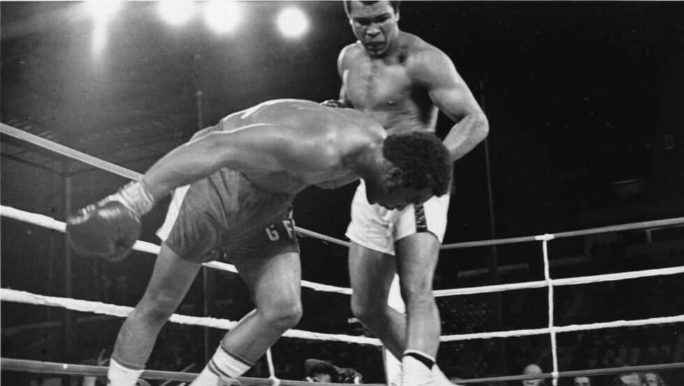FORSVARSLØS. George Foreman er på vei ned, helt forsvarsløs. Hodet er helt udekket for det siste definitive slaget. Muhammad Ali er klar, men ombestemmer seg og slår ikke. Foreman har sagt at han ble en stor beundrer der og da. Foto: AP.