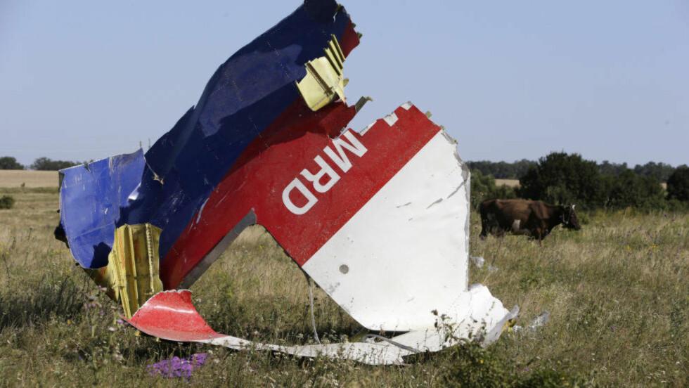 SKUTT NED:  Passasjerflyet MH17 ble skutt ned av en rakett og dette fikk naturlig nok massiv oppmerksomhet verden over. Foto: REUTERS / Sergei Karpukhin/ NTB Scanpix.