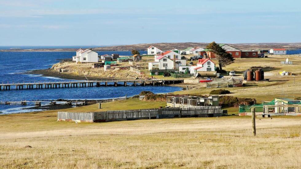 KLARER DU DENNE? I hvilket land ligger Falklandsøyene? Foto: JOHN5199 / CREATIVE COMMONS