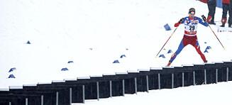 Ringrevens vågale genistrek sjokkerte nordmennene