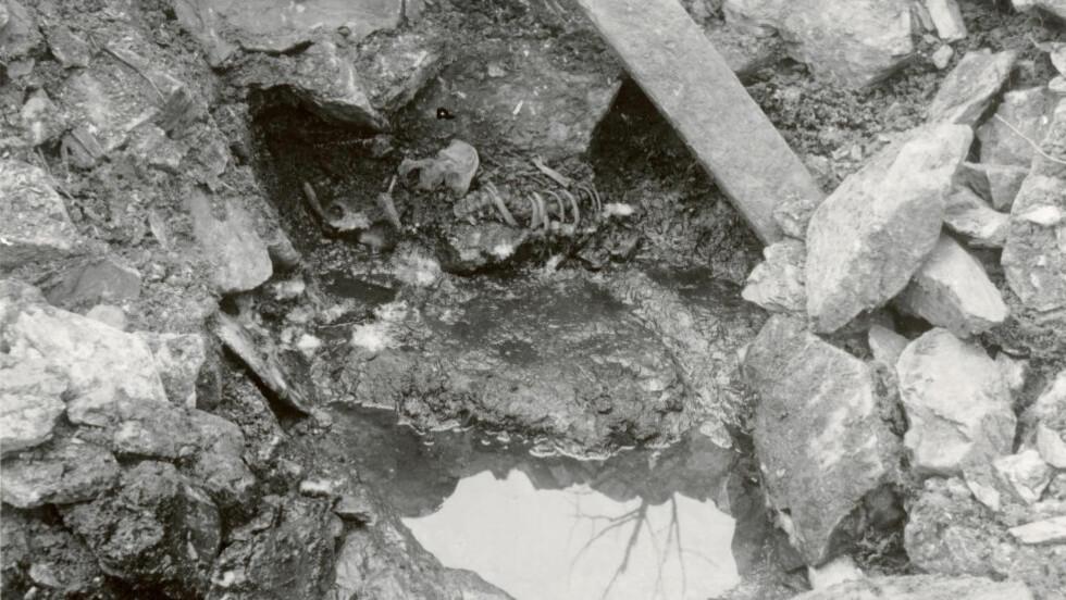 Bilde av skjelettet som ble avdekket i en gammel brønn under en arkeologisk undersøkelse i Sverresborg i 1938. Skjelettet ble den gangen ikke undersøkt før brønnen ble fylt igjen. 17. oktober i år ble skjelettet avdekket på nytt. Foto: Gerhard Fischer / Riksantikvaren / NTB scanpix