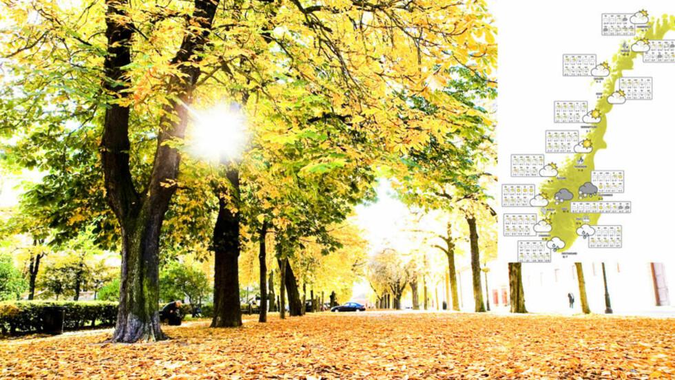 SOOOOOOL: Store deler av landet får sol i helga. Foto: NTB Scanpix