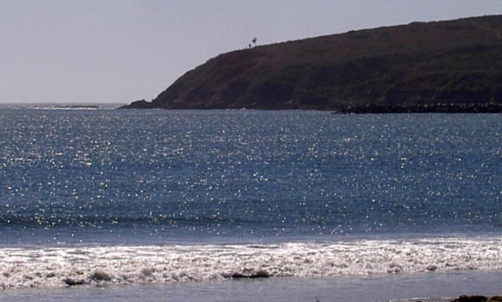 DRAMATISK: Fire år gamle Sebastion Johnson overlevde et fall på over 70 meter fra klippen Bodega Head i Bodega Bay i California. Foto: Wikimedia Commons