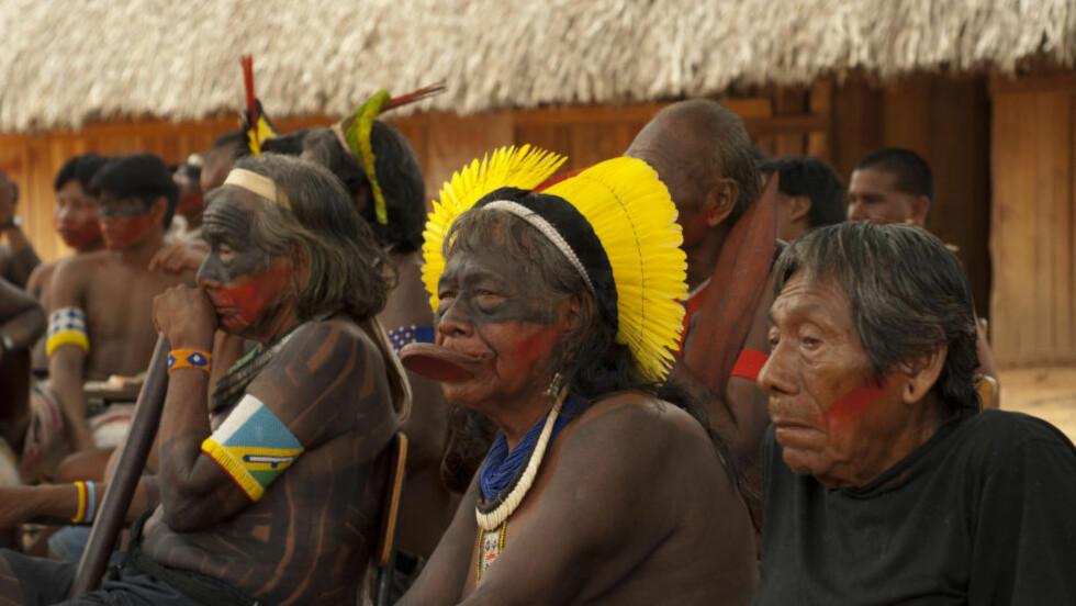 IKKE HØRT: - I Brasil blir vi dessverre bare sjelden hørt, forteller kayapo-høvdingen Raoni med sin karakteristiske leppeplate. ( foto: Adriano Jerozolimski)